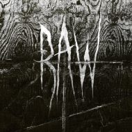 Raw – From the First Glass to the Grave (Aural)