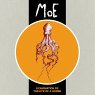 MoE – Examination of the Eye of a Horse (Conrad Sound/Wallace Records)