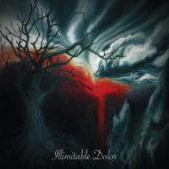 Illimitable Dolor - ST (Transcending Obscurity)