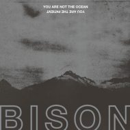 Bison - You are not the Ocean you are the Patient (Pelagic Records)